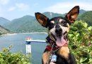 2017.7.16に開催される山北町『カヌーマラソンIN丹沢湖』の丹沢湖に行ってきました!