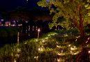 中井町「2015年・竹灯篭の夕べ」に行ってきました。