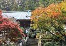 2018年紅葉情報(大雄山最乗寺と丹沢湖)