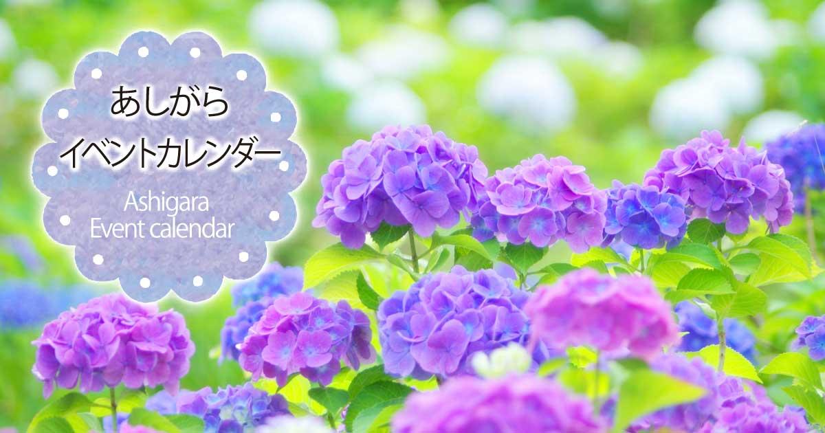 2017年夏号『足柄イベントカレンダー』|6月~10月のイベント情報はこちらからCheck!!