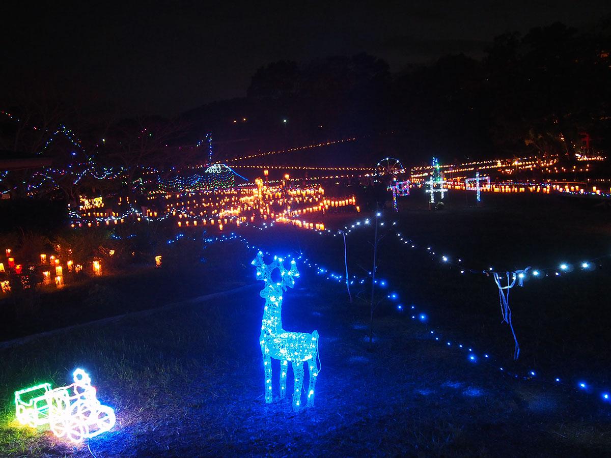 2017年12月2日 中井町厳島湿生公園『あかりの祭典』へ行きました