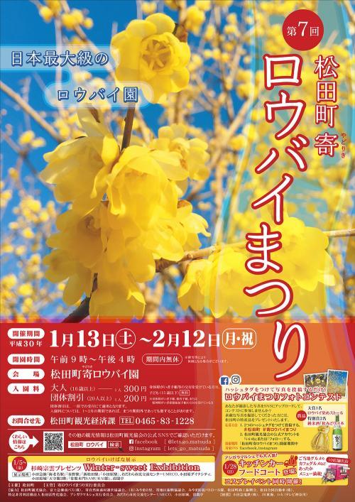里山に吹き渡る甘い風。第7回 松田町寄「ロウバイまつり」でわんこと深呼吸!
