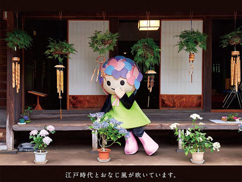 2018年6月19日 『開成町 瀬戸屋敷風鈴まつり』本日より開催!