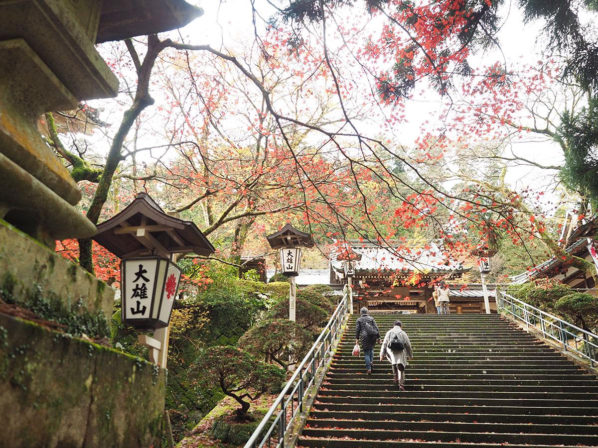 2019年12月3日『大雄山最乗寺』の紅葉情報