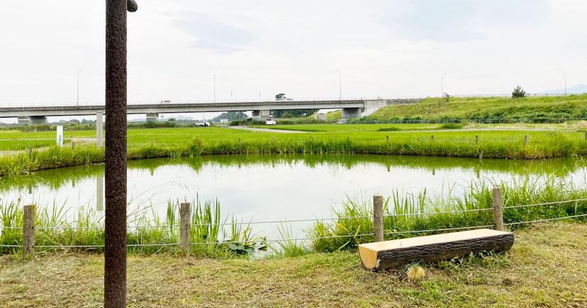 大井町 「関東の富士見100景」の「ひょうたん池」