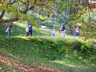 ざる菊が見頃の「大雄町花咲く里山」で里地里山地域資源活用モデルツアーが開催されました。